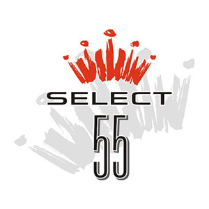 Bud-Select-55-Logo-3C15